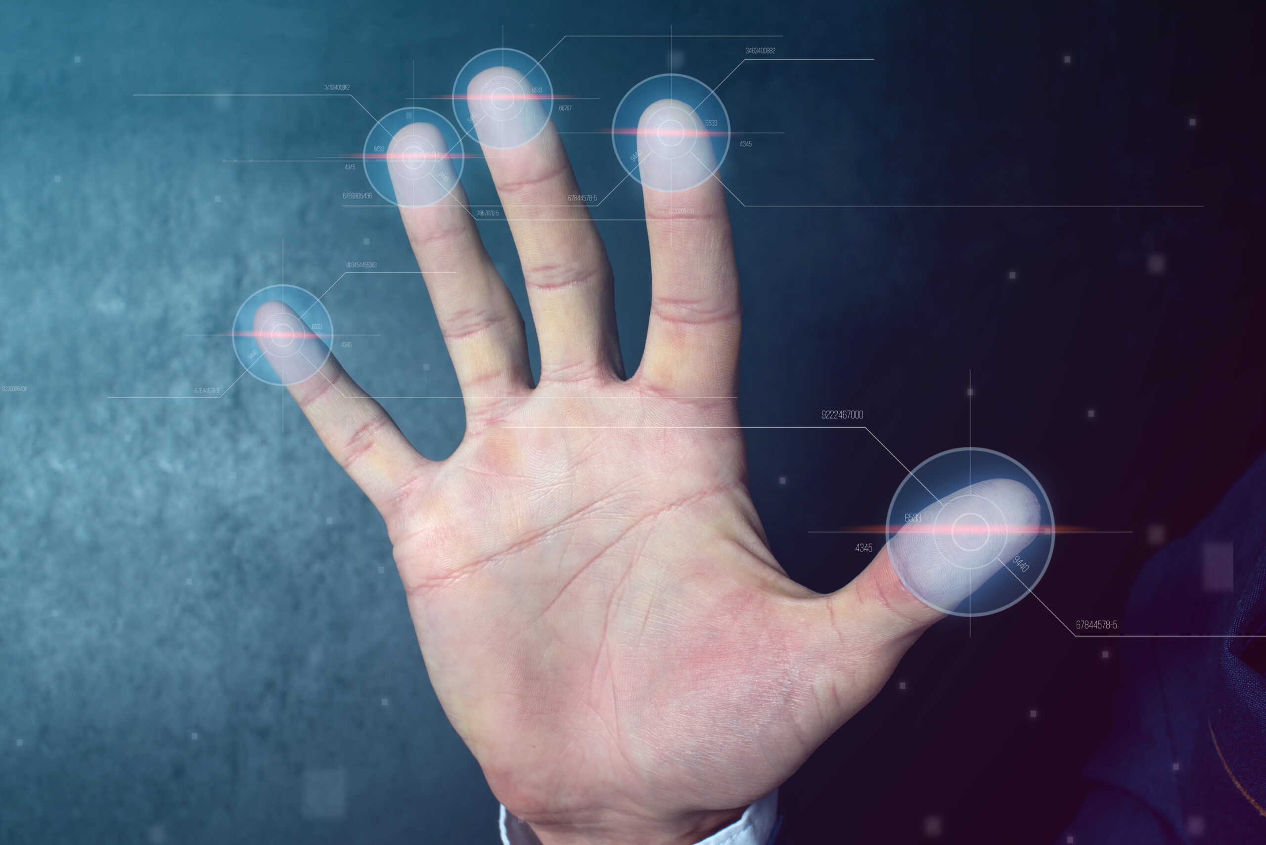biometric payment by arana security